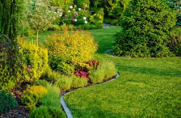 Landscaping-Binghamton-NY (1)