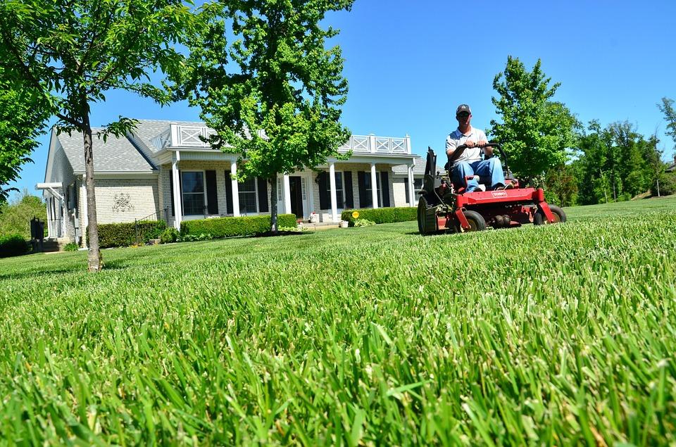 Lawn-care-Binghamton-NY (1)