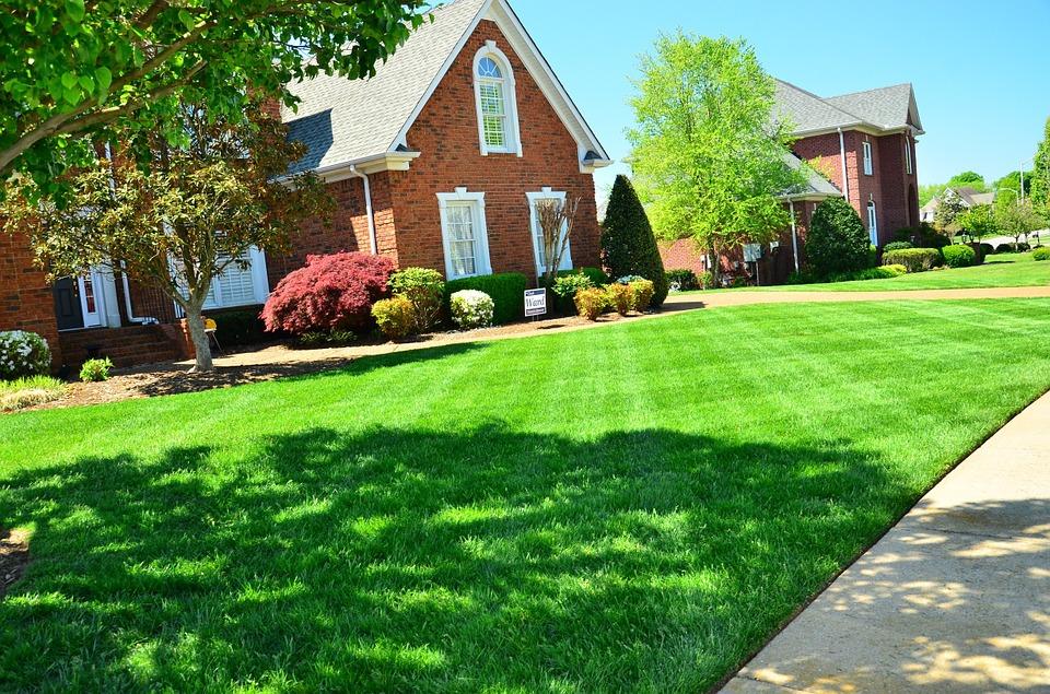 Binghamton NY Organic Lawn Care