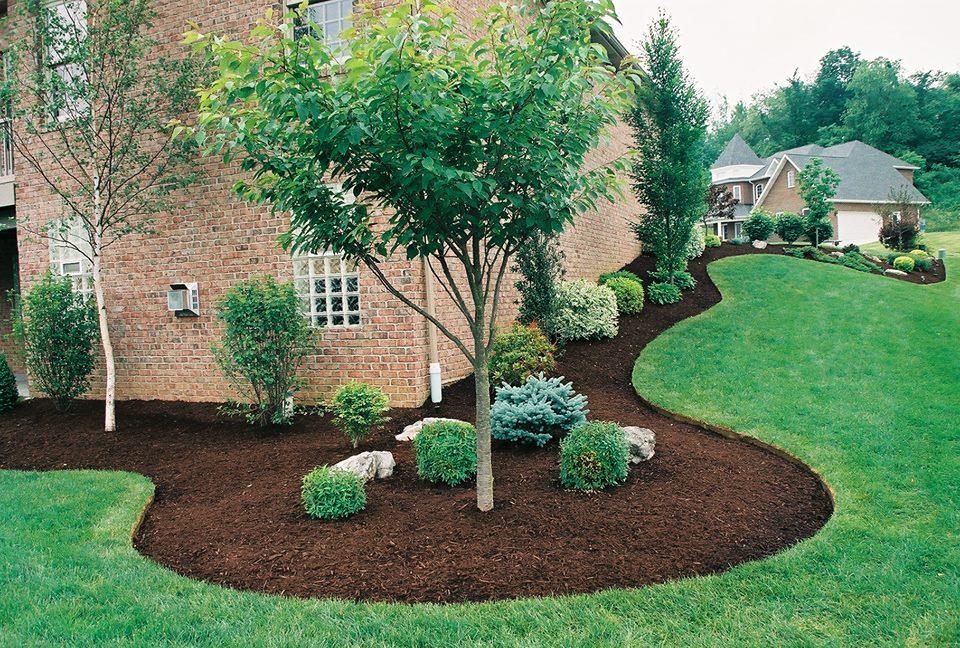 Binghamton NY Lawn Care