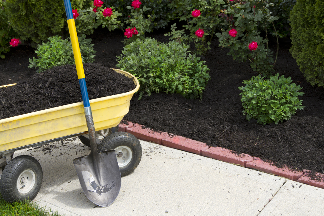 Use Mulch to Keep Your Soil Healthy